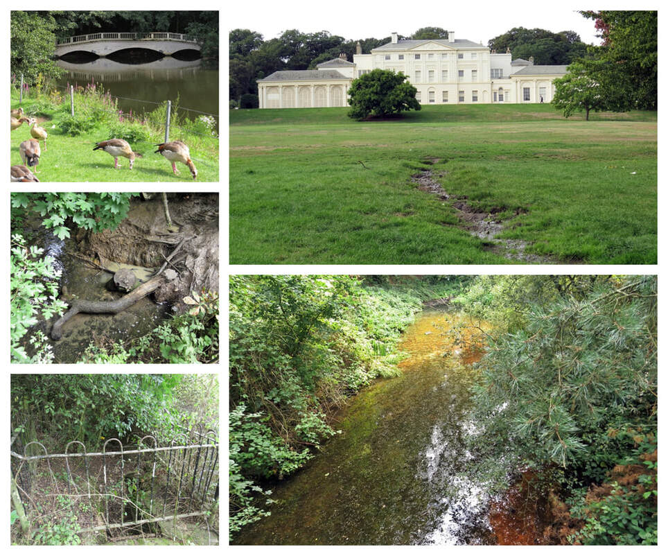 The guided walking tour passes Kenwood House a former stately home on the northern boundary of Hampstead Heath.Within, it's grounds we look at some of the headstreams that feed the River Fleet, one the largest of London's subterranean rivers.