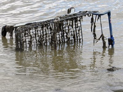 abandoned supermarket shopping trolleys submerged on the Thames in Deptford