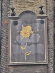 Faded pub sign of the closed down Old Rose pub  in Wapping