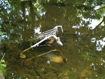 Dumped and abandoned supermarket shopping trolley in the Longford River in Hanwell