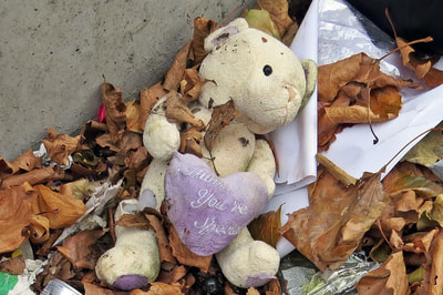 Your Special dumped cuddly toy off the Old Kent Road