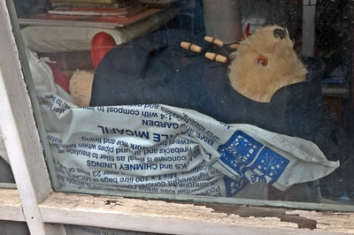 Redundant Paddington Bear toy in window of closed down shop