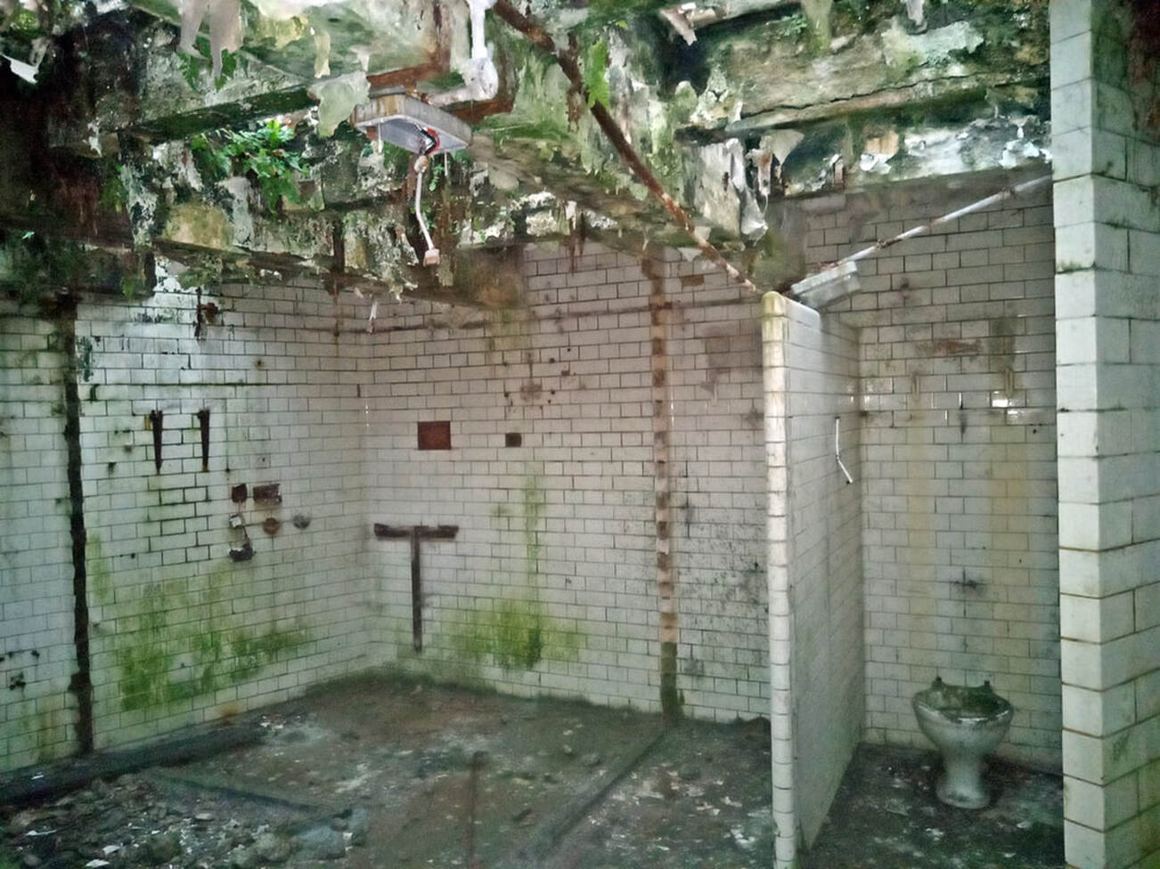 Picture of derelict London public toilets disused for several decades
