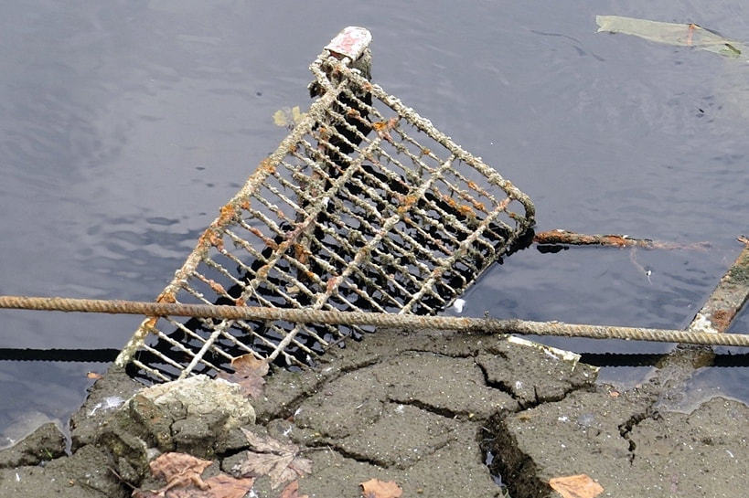 Abandoned supermarket shopping trolley disposed of in the Regents Canal, Limehouse